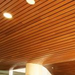 acoustic beams20