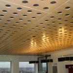 acoustic ceiling4